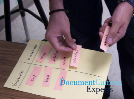 Categorizing Concepts Using a Document Camera Visualiser- Image 2